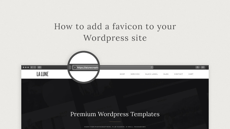 How to add a favicon to your WordPress site.